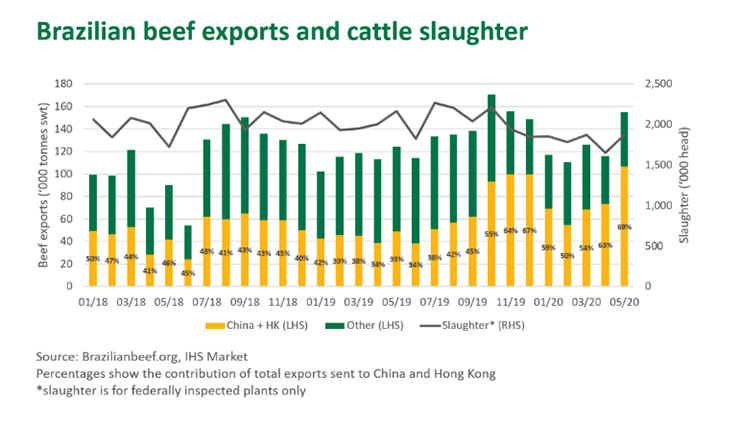 Brazilian beef exports and cattle slaughter graph