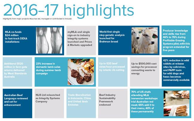 Annual Report   Meat  Livestock Australia
