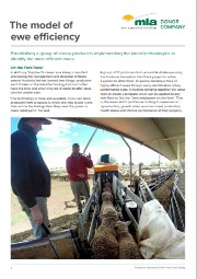 Producer Innovation Fast-Track Sheepmatters Case Study