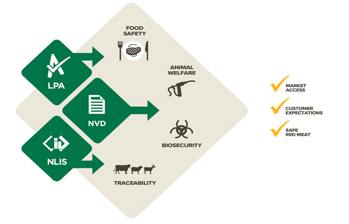 red meat in australia • around 200,000 people are involved in the red meat  fast facts 2013  without prior consent and acknowledgement of meat & livestock australia.