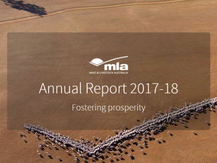 New Annual Report just a click away