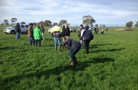 Applications open for on-farm producer demonstration sites