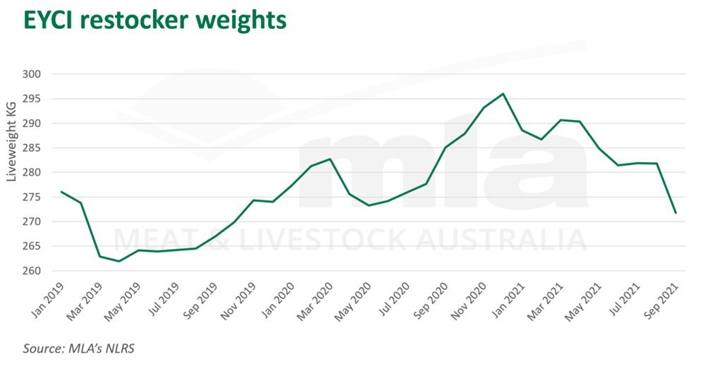 EYCI restocker weights.png