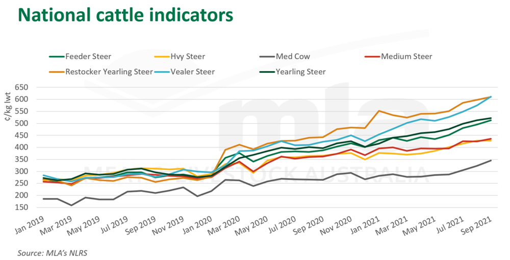 national cattle indicators.png