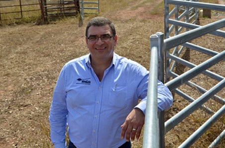 Livestock market officers return to the field