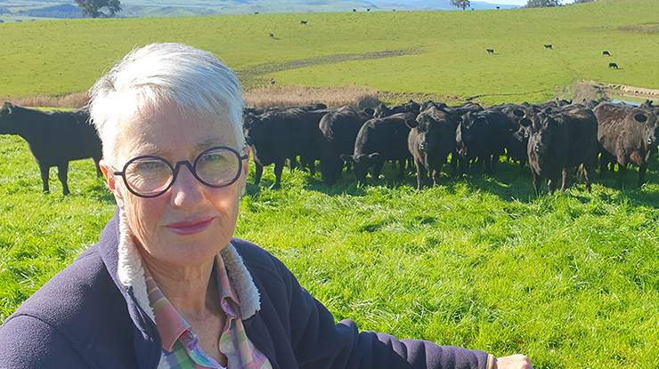 Linda Nankervis, with some of the family's  self-replacing Angus herd on their farm near Corryong.