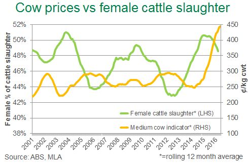 18052016-cow-slaughter-price.jpg