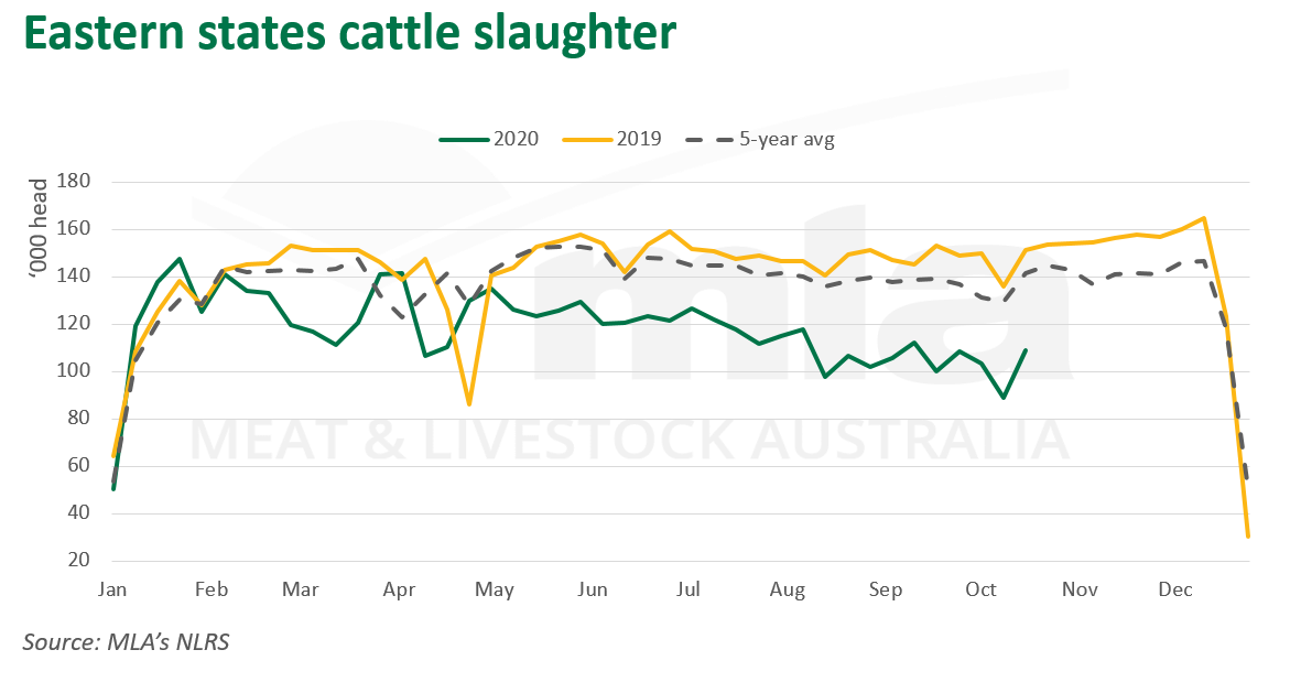 East-cattle-slaughter-221020.png