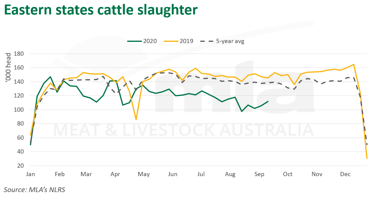 Eastern-states-cattle-slaughter-170920.png