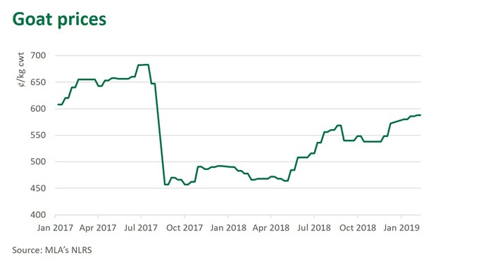 Goat prices on the rise | Meat & Livestock Australia
