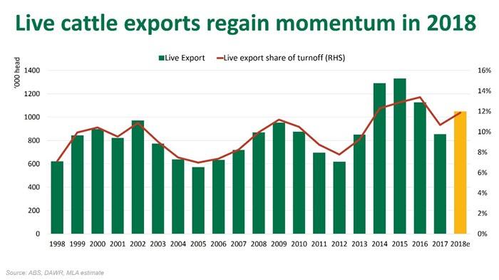 Cattle exports gain momentum   Meat & Livestock Australia