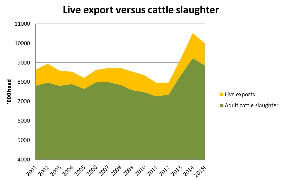 Live-export-versus-cattle-slaughter.jpg