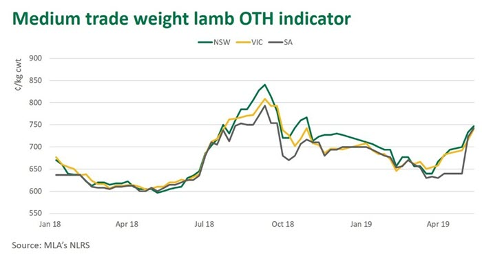 Lamb OTH on the rise | Meat & Livestock Australia