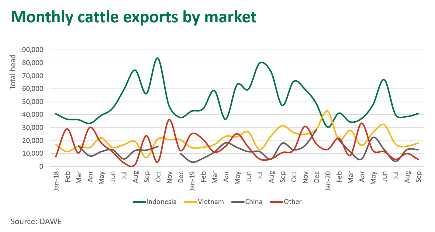 Monthly-cattle-exports-291020.png