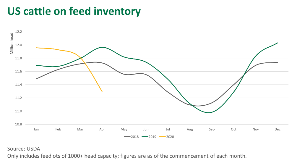 US-cattle-feed-210520.png